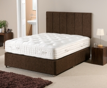 Monarch bed set in a domestic environment